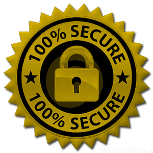 secure-payment-100%